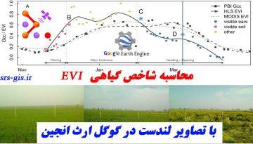 محاسبه شاخص گیاهی EVI با تصاویر لندست در گوگل ارث انجین | مدرسه سنجش از دور و جی ای اس